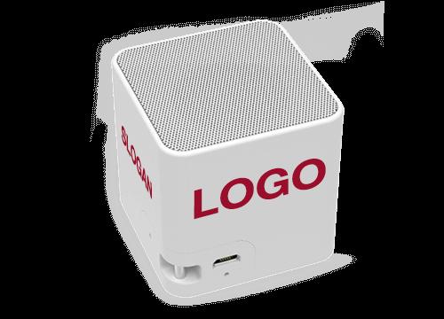 Cube - Custom Speaker