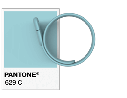Pantone® References USB Wristband
